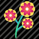 blossom, cherry, festival, flower, plant, sakura icon