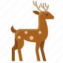 animal, christmas, deer, reindeer, xmas