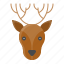 animal, christmas, deer, face, reindeer, xmas