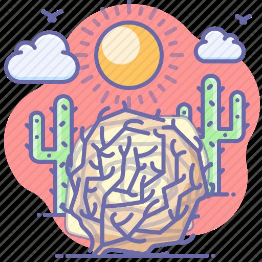 desert, not found, tumbleweed icon