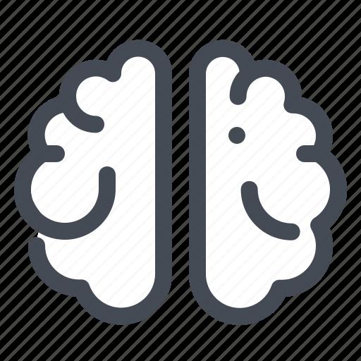 brain, education, intellectual, knowledge, learn, mind, school icon