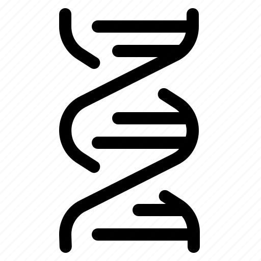 dna spiral, education, genetic, laboratory, school, science, study icon