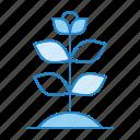 biology, botanical, botany, flower, plant icon