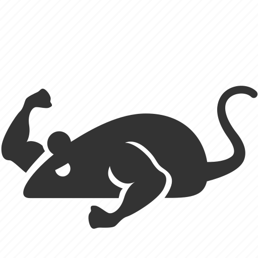experiment, mice, mouse, muscle, mutant, rat, strong icon