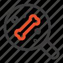 bone, science, search icon