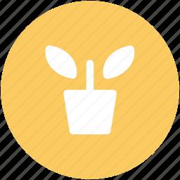 leafage, plant, plant pot, sapling, small plant icon