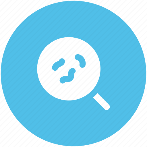 bacteria, examine, germs, magnifier, magnifying, searching bacteria, virus icon