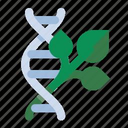 dna, gmo, plant, science icon