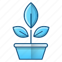 botany, greenery, leaves, plant, science icon