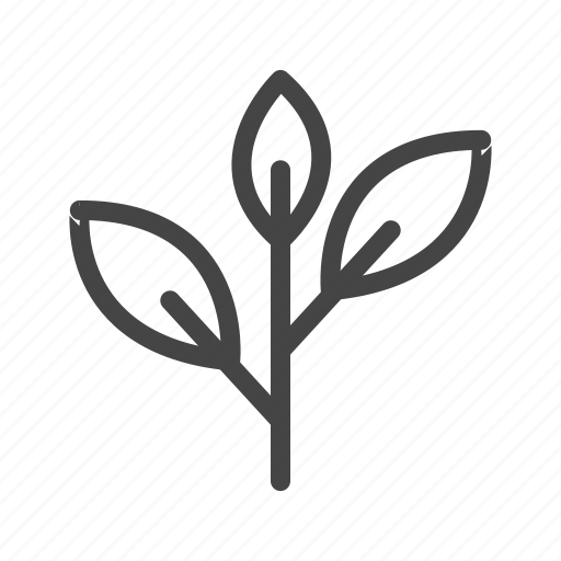 ecology, flower, garden, leaf, nature, plant, science icon