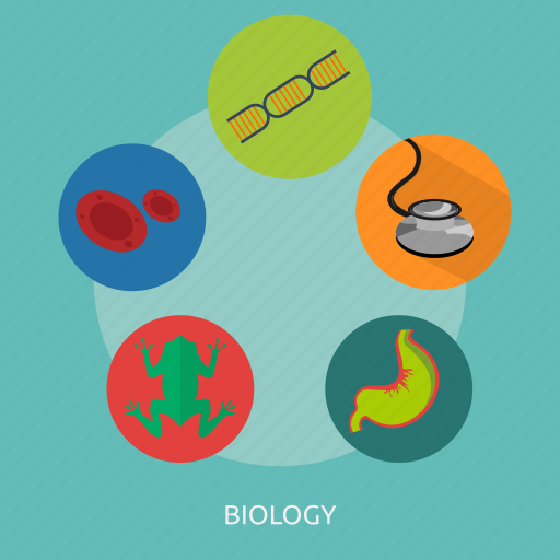 biological, biology, cell, experiment, laboratory, medicine, science icon