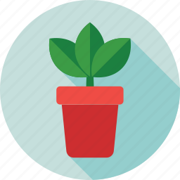 flowering plant, greenery, nature, plant, plant pot icon
