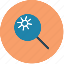 bacteria, find, magnifying, search, view icon