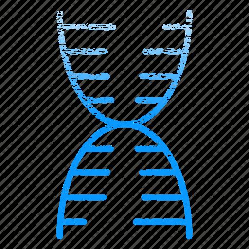 dna, laboratory, research, science, scientific, structure icon