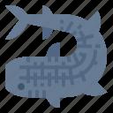 mammals, aquatic, shark, marine, whale, animal icon