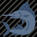marlin, fish, animals, aquatic, sea, atlantic