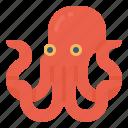 food, aquatic, octopus, marine, animal, sea icon