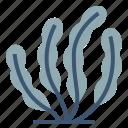 ocean, sea, seaweed, marine, plants icon