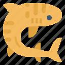 sea, marine, shark, mammals, tiger icon