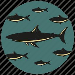 fish, school of fish, sea life, shark, shoal of fish icon