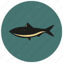 fish, sea, sea creature, sealife, underwater icon