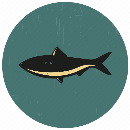 fish, sea, sea creature, sealife, underwater icon