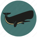 blue whale, humpback, sea creature, sea life, sealife, sperm whale, whale icon