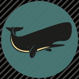 blue whale, humpback, sea creature, sea life, sealife, sperm whale, whale icon