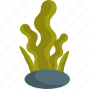 alga, food, sea, seaweed icon