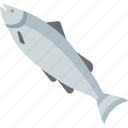 fish, food, sea, water icon