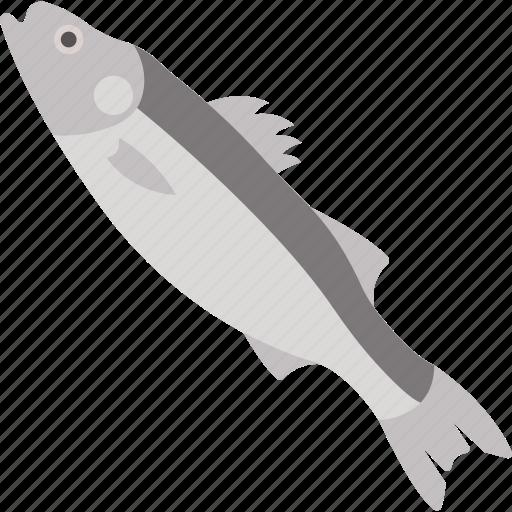 animal, food, ocean, sea icon