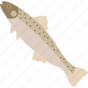 animal, fish, food, river, sea icon