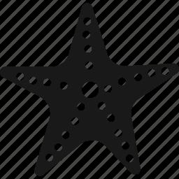 ocean, sea, star, starfish icon