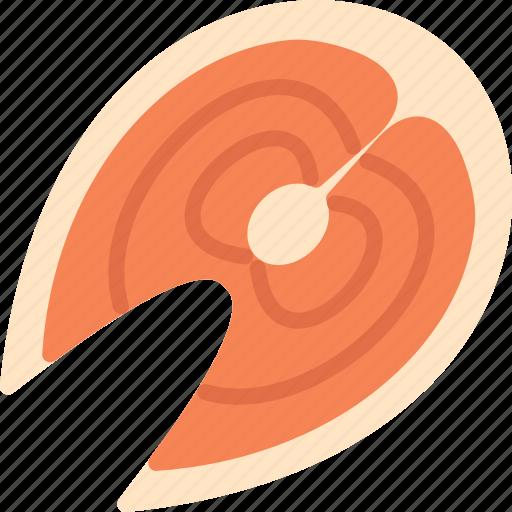 food, salmon, seafood icon