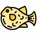 animal, aquarium, fish, puffer, seafood icon