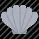 cockle, seafood, shell, shellfish icon
