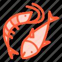 animal, fish, food, seafood, shrimp