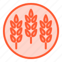 fibers, food, healthy, meal, oats icon