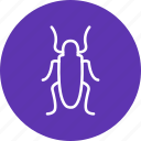bug, butterfly, insect icon