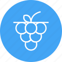 food, fruit, grape icon