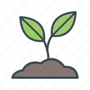 growth, science, sprout icon