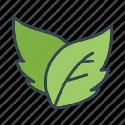 essential, leaf, ui icon