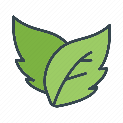 Essential, leaf, ui icon - Download on Iconfinder