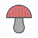 cooking, food, mushroom icon