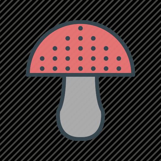 Cooking, food, mushroom icon - Download on Iconfinder