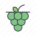 food, fruit, grape, grapes icon