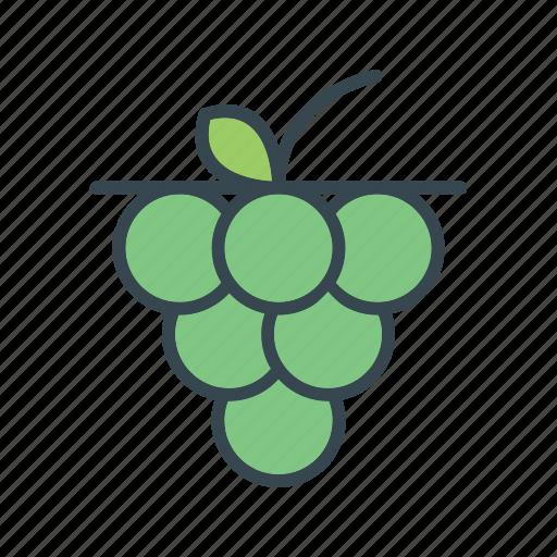 food, fruit, grape, grapes icon