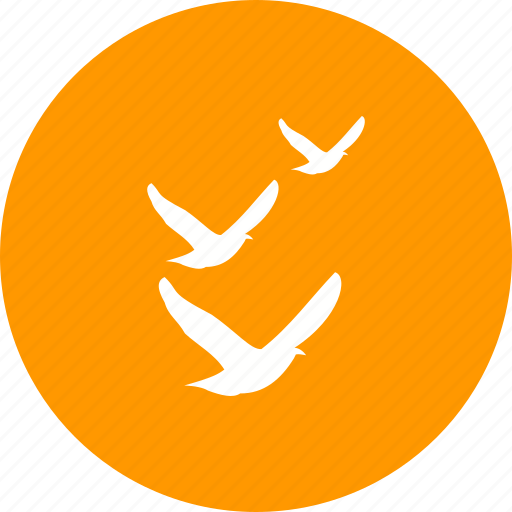 bird, birds, flight, flock, flying, nature, sky icon