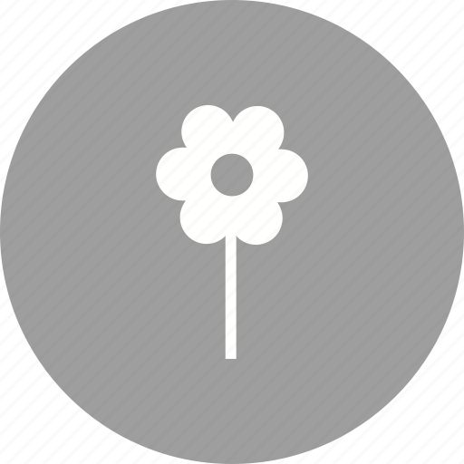 flower, garden, plant, planting, plants, pot, spring icon