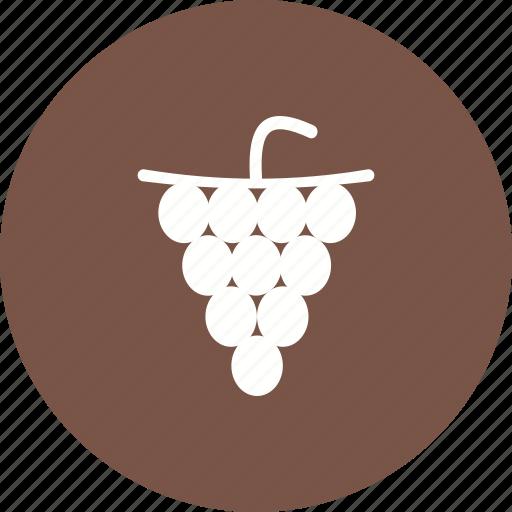 autumn, bunch, dark, food, grapes, nature, wine icon